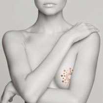 Sexy tattoo temporanei Mimi Metallic Skin Transfer Bijoux Indiscrets