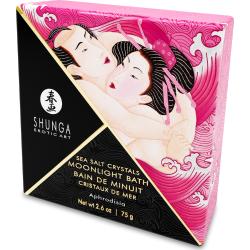 Sali da bagno Love Bath Aphrodisia Shunga Erotic Art
